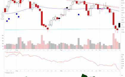 Sally Beauty Holdings stock chart shows oversold setup.
