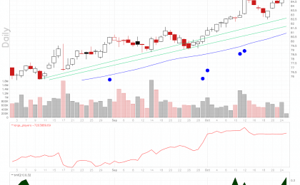 Synopsys Inc stock chart shows rising Twiggs Money Flow.