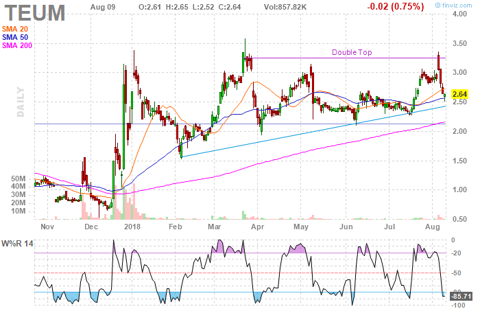 TEUM stock pulls back to support